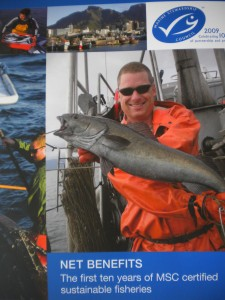 Happier times: the cover of the Marine Stewardship Council's current annual report