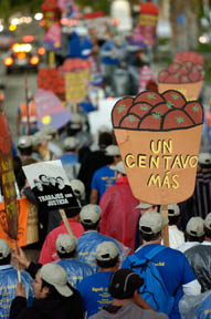 Photograph by Coalition of Immokalee Workers