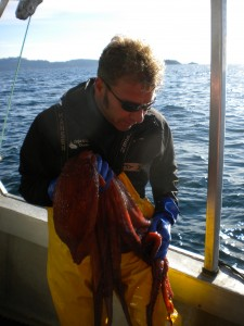 """Don't call me bycatch."" Keitsch with a soon-to-be-released octopus."